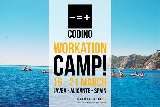 Camp Sun and Co. & Codino