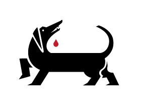 Logo Wunderdogs
