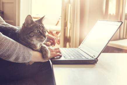 Top Digital Nomad Friendly Careers: Jobs & Professions to Work Remotely