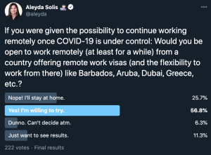 Professionals Open to Use Remote Work Visa - Work From Abroad