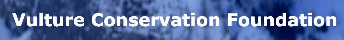 Vulture Conservation Foundation