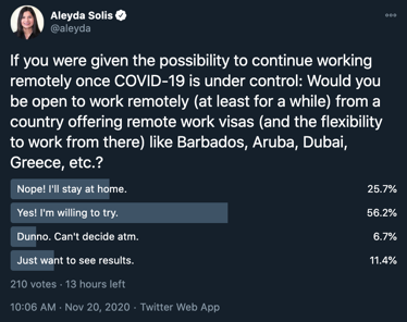 remote work visa poll